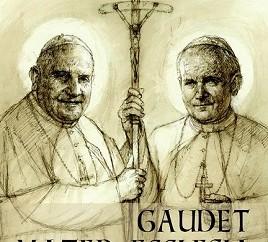 Mídias sociais irão informar peregrinos durante Canonização
