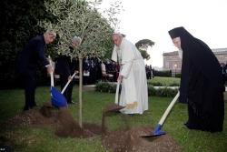 Francisco: cultivar a paz é preciso, mas o verdadeiro agricultor é Deus