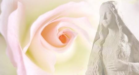 5 características da verdadeira devoção a Maria