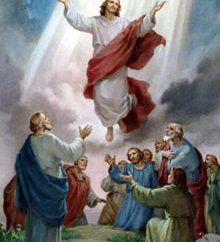 São Marcos, Evangelista . Festa