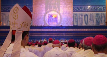 O episcopado no Brasil: 480 bispos e 307 membros efetivos da CNBB