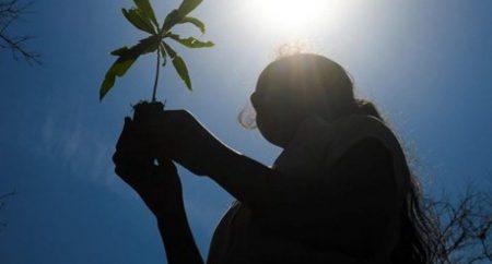 Pastorais do Meio Ambiente conscientizam a população diante da realidade atual do planeta